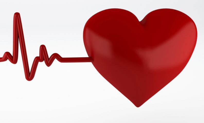 principios baciscos del electrocardiograma